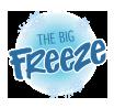 The Big Freeze Festival